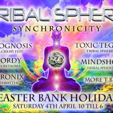 Synchronicity Party